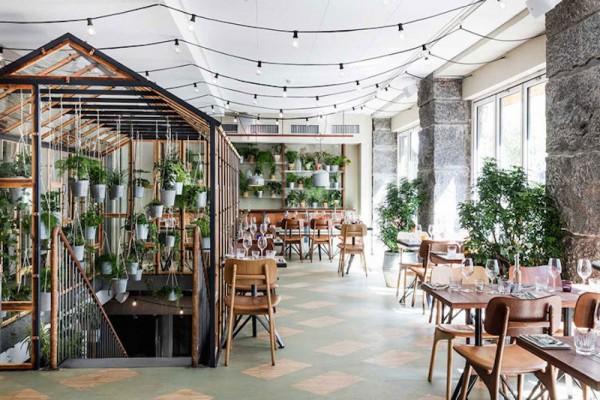 vakst-restaurant-in-copenhagen-is-green-oasis-4-800x534