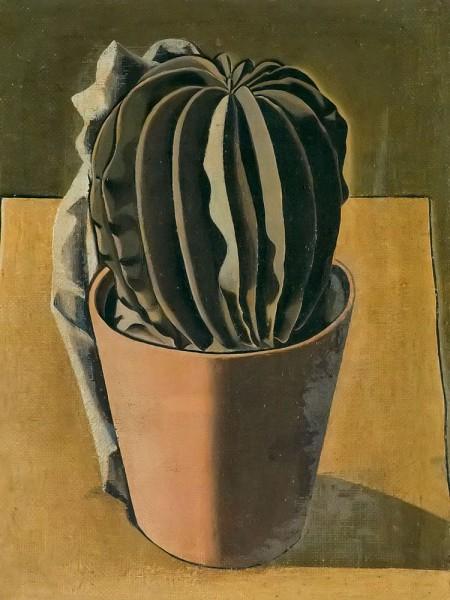 Giorgio Morandi Cactus