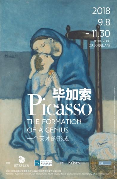 毕加索—一位天才的形成 海报