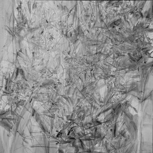 杨鹏 蘼芜 纸本水墨 122 × 122 cm 2016
